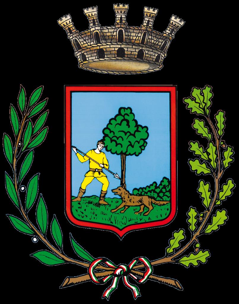 Città di San Martino di Lupari