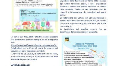 INTERVENTI A FAVORE FAMIGLIE FRAGILI E ASSEGNO PRENATALE ANNO 2020